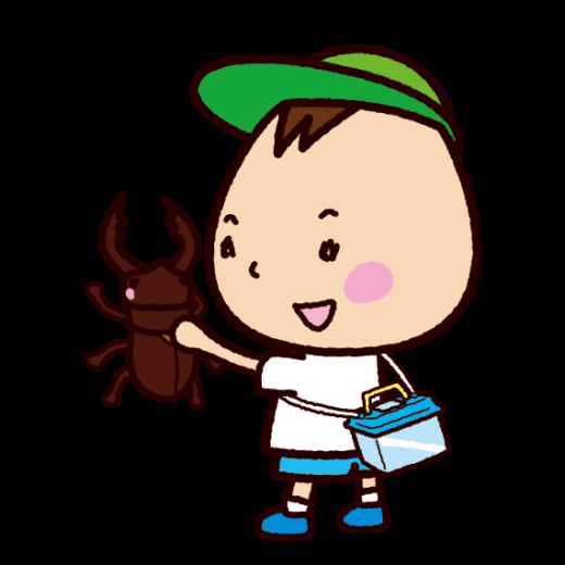 クワガタムシを捕まえた子供のイラスト(虫取り)(2カット)