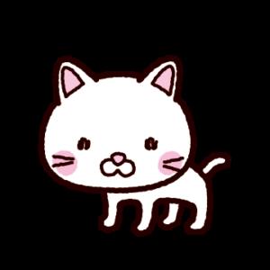 白猫のイラスト