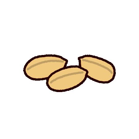 ピーナッツのイラスト(落花生)