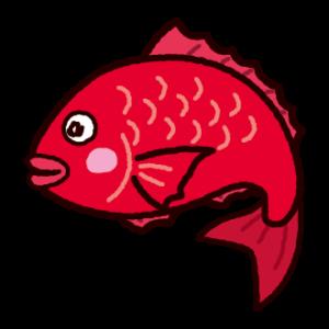 鯛のイラスト