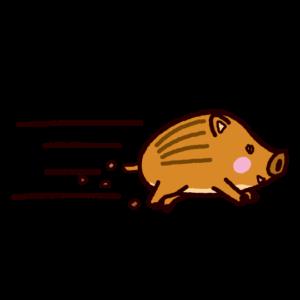 イノシシのイラスト(猪突猛進)