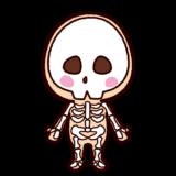 骨のイラスト(骨格)
