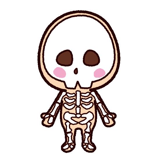 「骨 イラスト」の画像検索結果