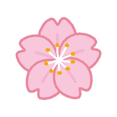 桜の花のイラスト(3カット)