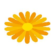黄色い花のイラスト
