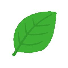 葉っぱのイラスト(4カット)