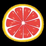 グレイープフルーツのイラスト(輪切り)
