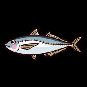 魚のイラスト(鯵・アジ)