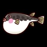 魚のイラスト(河豚・フグ)