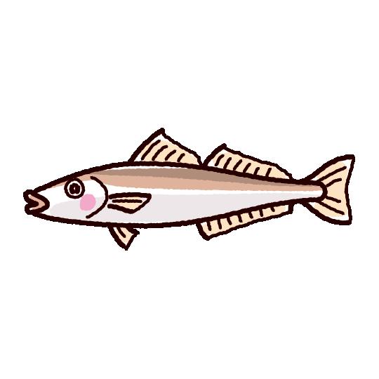 簡単 魚 イラスト
