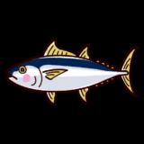 魚のイラスト(鮪・マグロ)