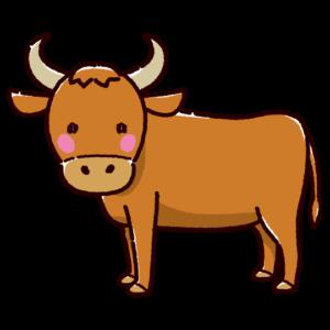 牛のイラスト(雄牛)