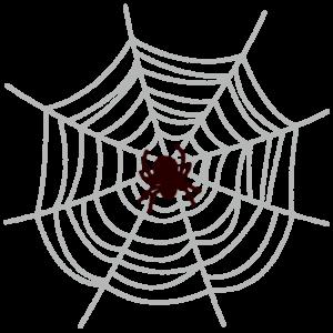 クモとクモの巣のイラスト(ハロウィン)