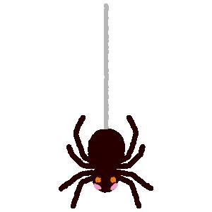 クモのイラスト(2カット)