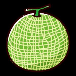 メロンのイラスト(1玉)