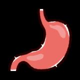胃のイラスト(内臓・臓器)