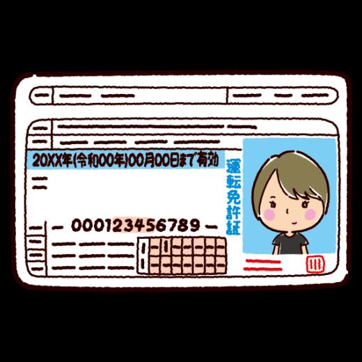 運転免許証のイラスト(若者・女性)(2カラー)