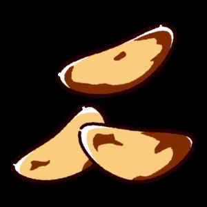 ブラジルナッツのイラスト