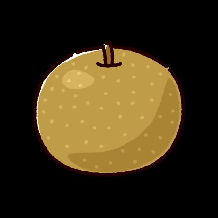 梨のイラスト(2カット)