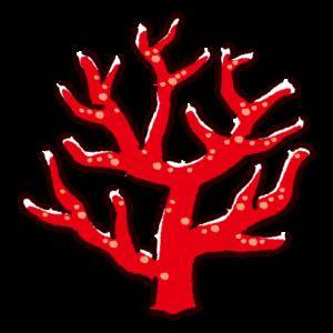 珊瑚のイラスト