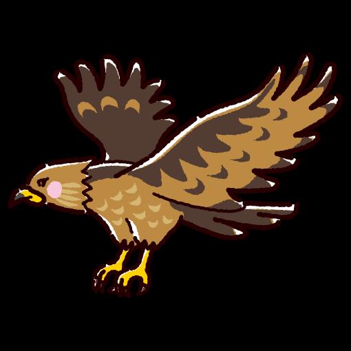 鷹のイラスト(2カラー)