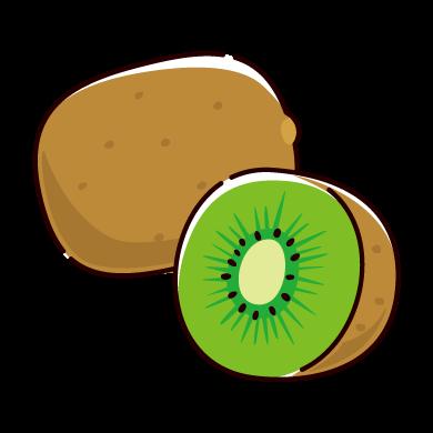 キウイフルーツのイラスト(2カット)