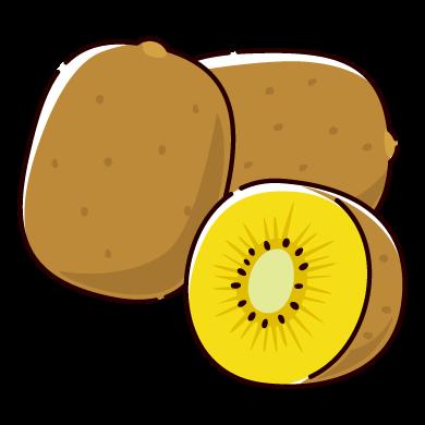 キウイフルーツのイラスト(黄色)(2カット)