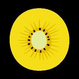 キウイフルーツのイラスト(輪切り・黄色)(2カット)