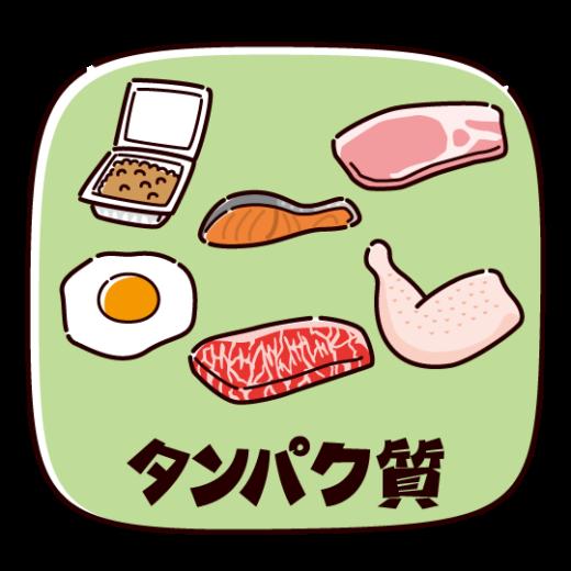 タンパク質を多く含む食品のイラスト(2カット)